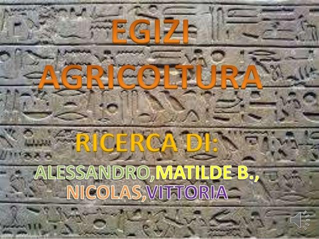 RICERCA DI: