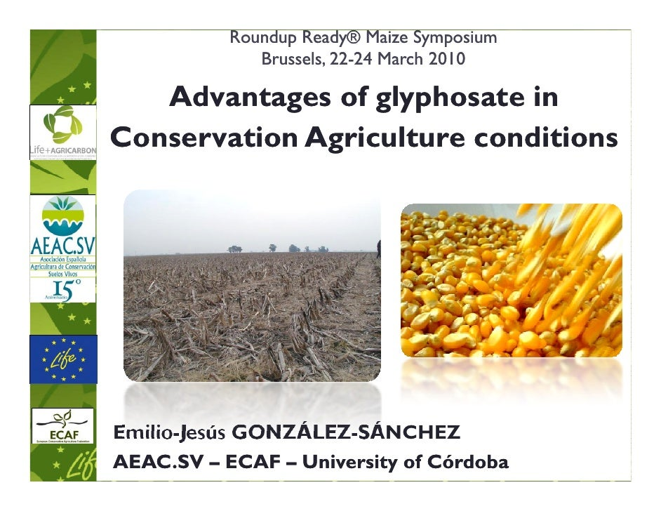 Roundup Ready® Maize Symposium               Brussels, 22-24 March 2010                         22-     Advantages of glyp...