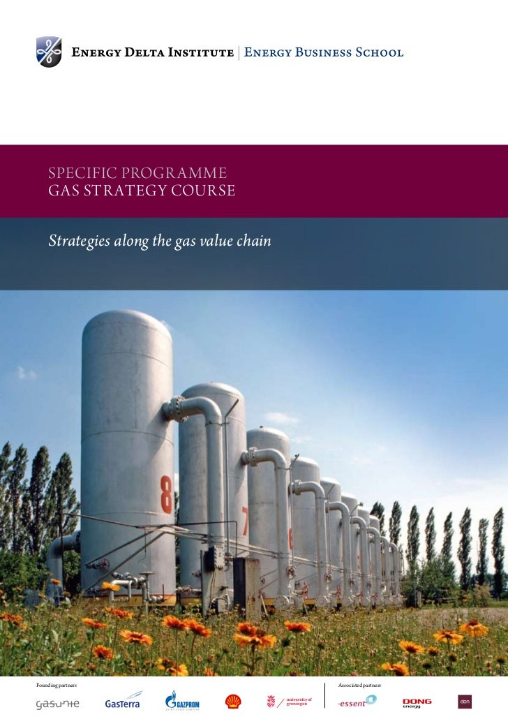 SpeciFic progr amme               gaS Str ategy courSe               Strategies along the gas value chainFounding partners...