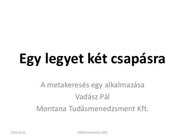 Egy legyet két csapásra A metakeresés egy alkalmazása Vadász Pál Montana Tudásmenedzsment Kft. 2013.10.03.  OSINT konferen...