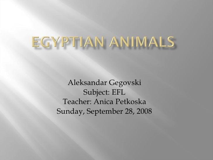 Aleksandar Gegovski Subject: EFL Teacher: Anica Petkoska Sunday, September 28, 2008