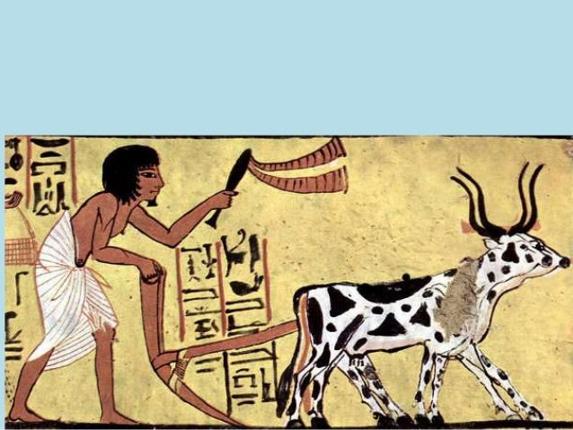 Ancient Egyptian Farming And Seasons Of The Nile