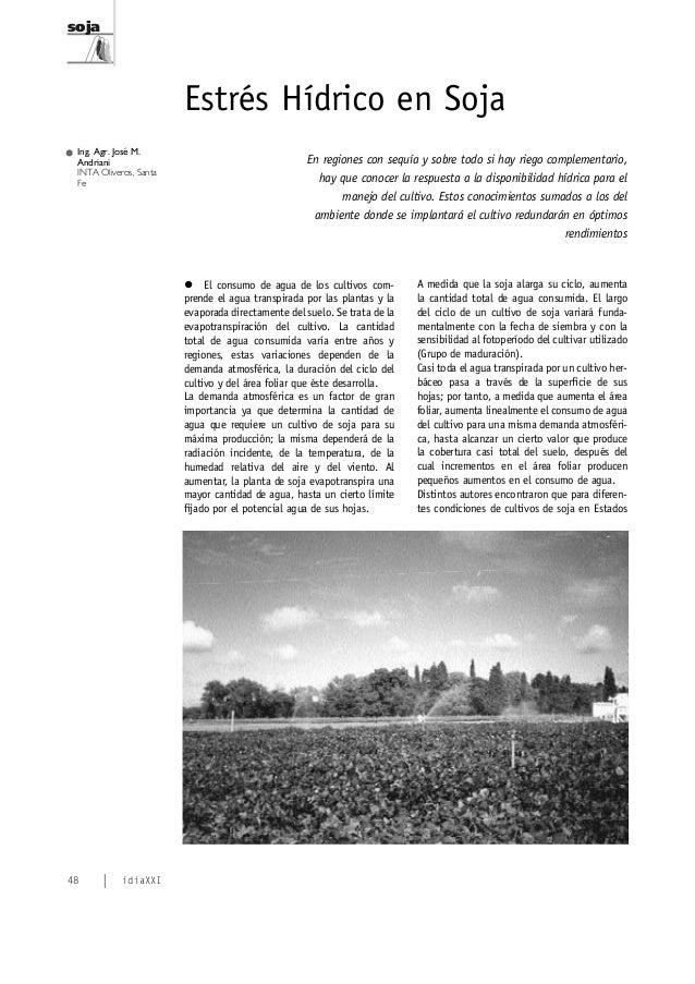 soja  Estrés Hídrico en Soja Ing. Agr. José M. Andriani INTA Oliveros, Santa Fe  En regiones con sequía y sobre todo si ha...