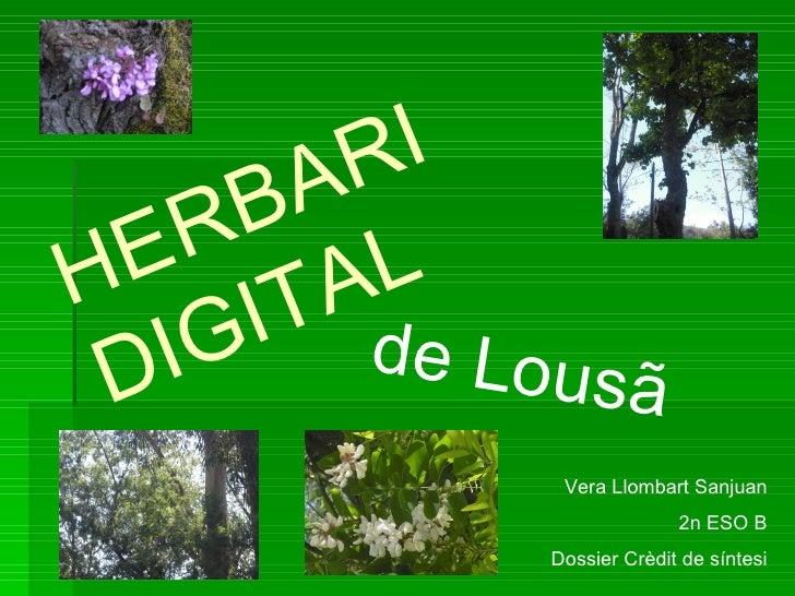 R I       B A  E  R H ITAL  D IG de Lousã             Vera Llombart Sanjuan                          2n ESO B            D...