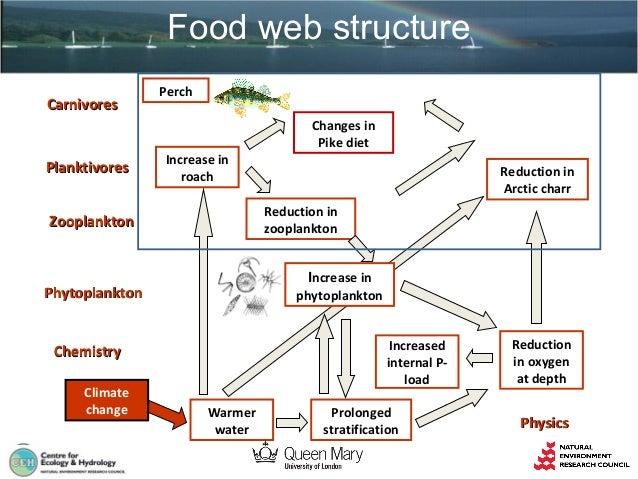 Altered food web structure Slide 2