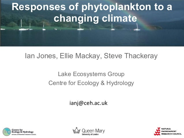 Responses of phytoplankton to a changing climate  Ian Jones, Ellie Mackay, Steve Thackeray Lake Ecosystems Group Centre fo...