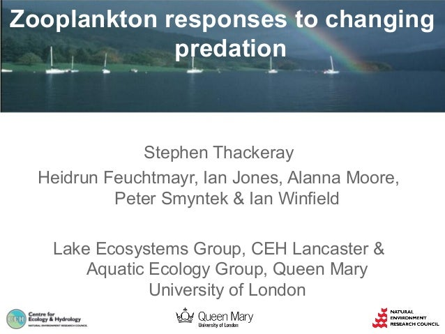Zooplankton responses to changing predation  Stephen Thackeray Heidrun Feuchtmayr, Ian Jones, Alanna Moore, Peter Smyntek ...