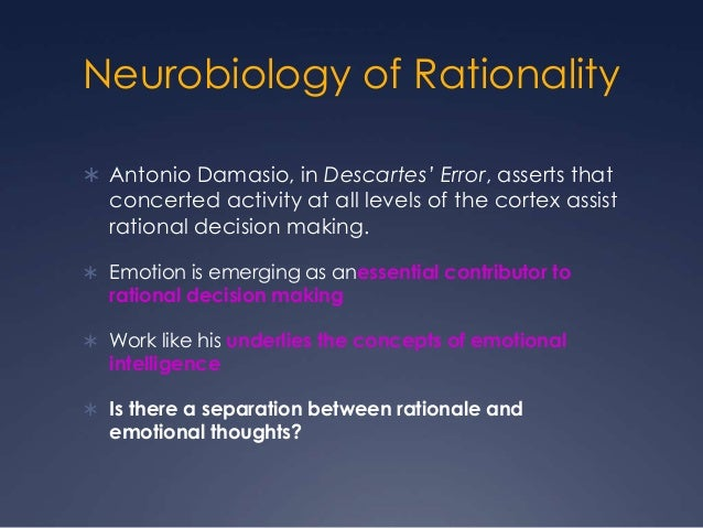 Relationships between emotion and rationality