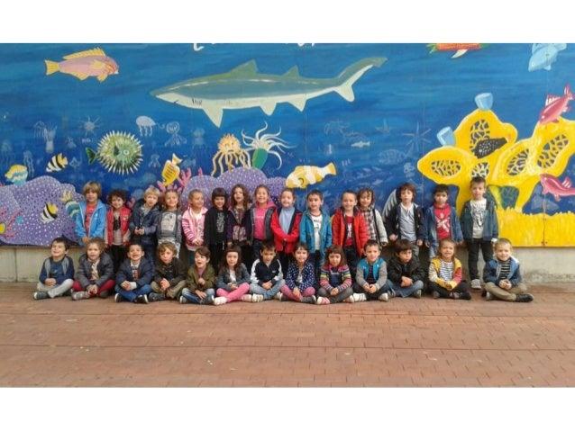 EI4 Visiten l'Aquàrium de Barcelona