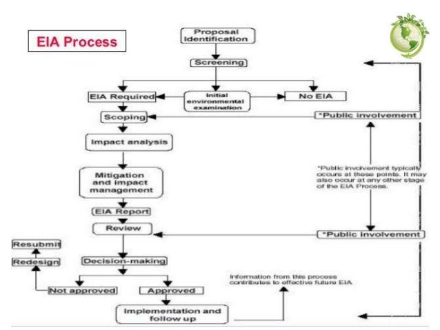 Case Study on EIA   Case Study Template
