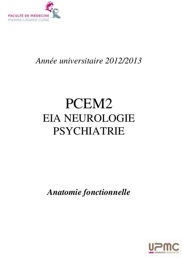 Année universitaire 2012/2013  PCEM2 EIA NEUROLOGIE PSYCHIATRIE  Anatomie fonctionnelle