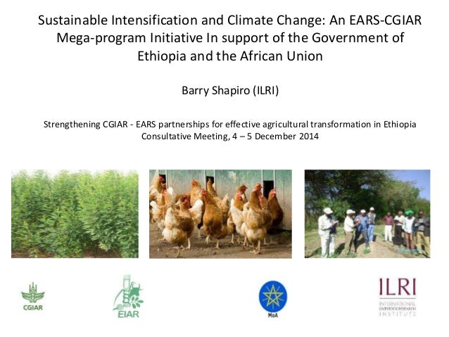 Sustainable Intensification and Climate Change: An EARS-CGIAR  Mega-program Initiative In support of the Government of  Et...