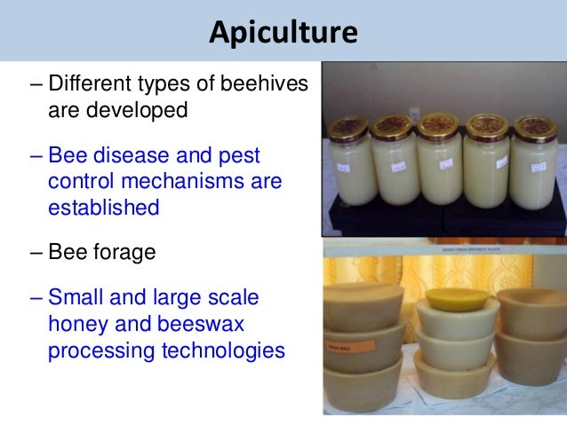 Apiculture– Different types of beehives  are developed– Bee disease and pest  control mechanisms are  established– Bee for...