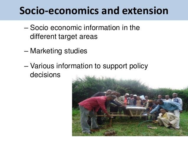 Socio-economics and extension– Socio economic information in the  different target areas– Marketing studies– Various infor...