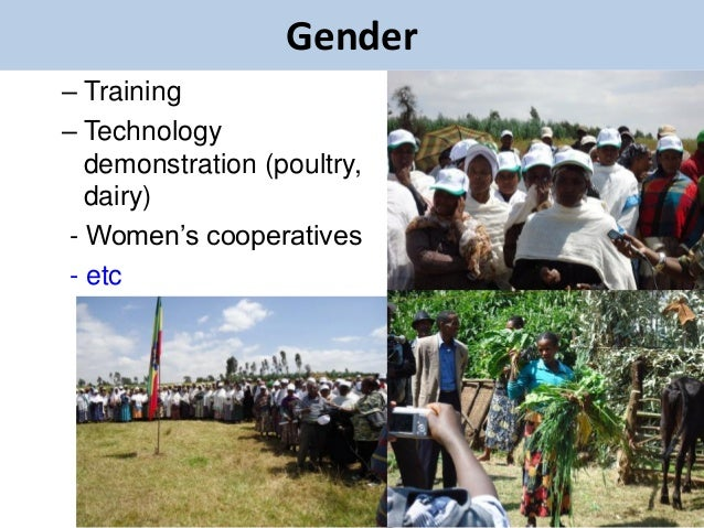 Gender– Training– Technology   demonstration (poultry,   dairy) - Women's cooperatives - etc