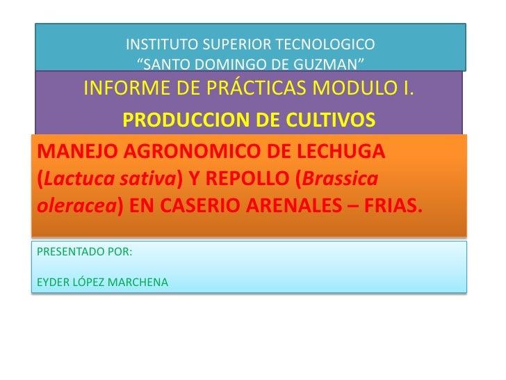 """INSTITUTO SUPERIOR TECNOLOGICO""""SANTO DOMINGO DE GUZMAN""""<br />INFORME DE PRÁCTICAS MODULO I.<br />PRODUCCION DE CULTIVOS<b..."""