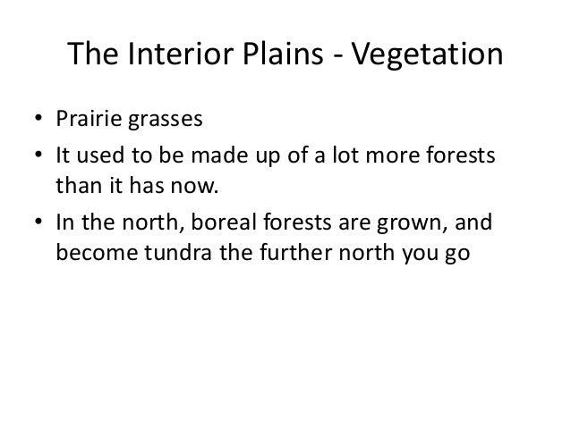 18. The Interior Plains ...