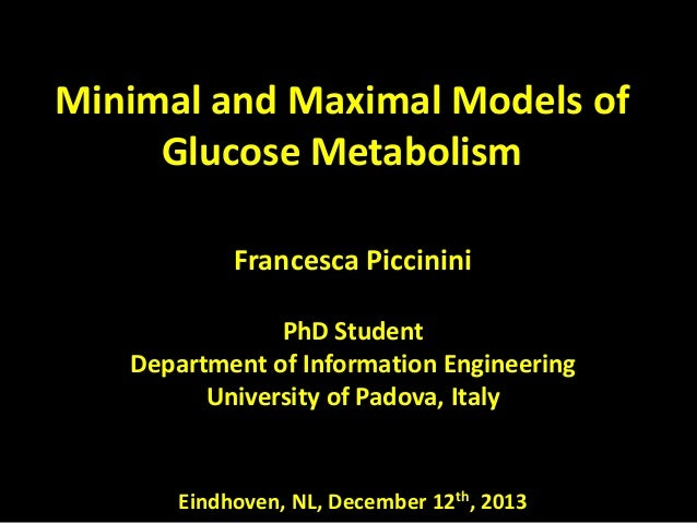 Minimal and Maximal Models of Glucose Metabolism Francesca Piccinini PhD Student Department of Information Engineering Uni...