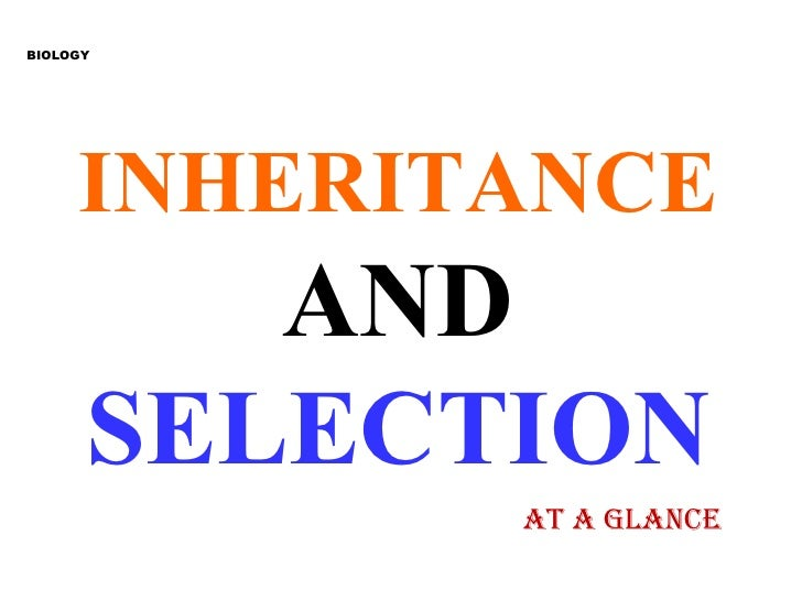 INHERITANCE   AND  SELECTION BIOLOGY AT A GLANCE