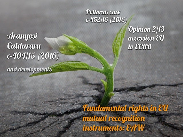 Fundamenta l right s i n EU mutua l recognitio n instrument s : E A W Poltora k c as e c -452/16 (2016) Opinio n 2/13 acc ...