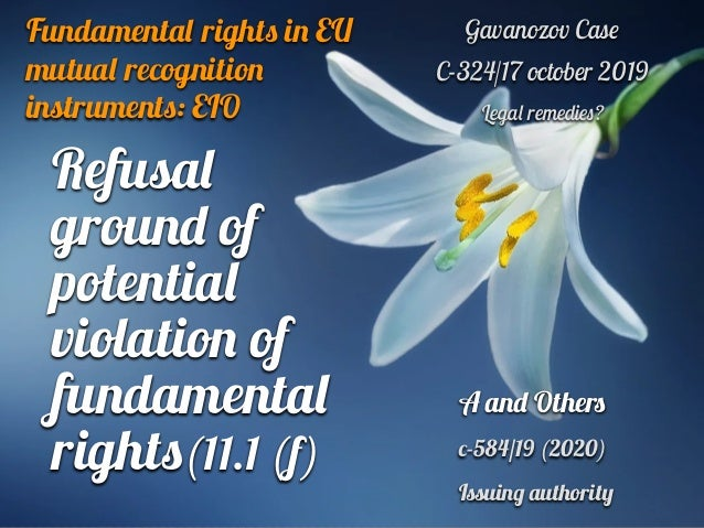 Fundamenta l right s i n EU mutual recognitio n instrument s : EIO Gavanozov Cas e   C-324/17 october 2019   Lega l remedi...