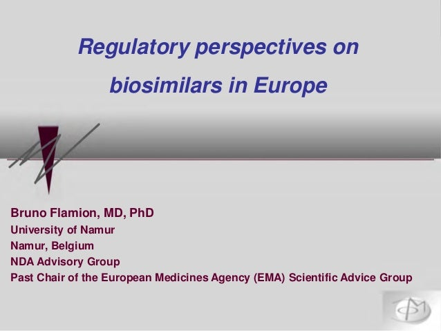 Bruno Flamion, MD, PhD University of Namur Namur, Belgium NDA Advisory Group Past Chair of the European Medicines Agency (...