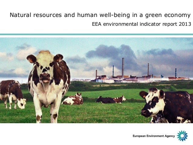 Natural resources and human well-being in a green economy EEA environmental indicator report 2013