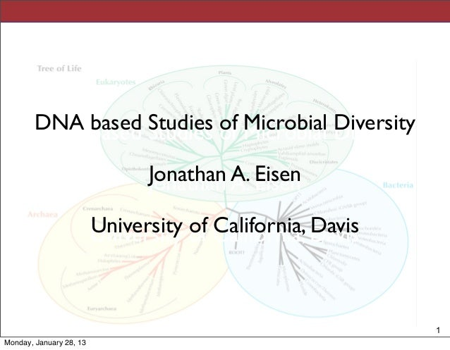 DNA based Studies of Microbial Diversity        DNA based Studies of Microbial Diversity                               Jon...