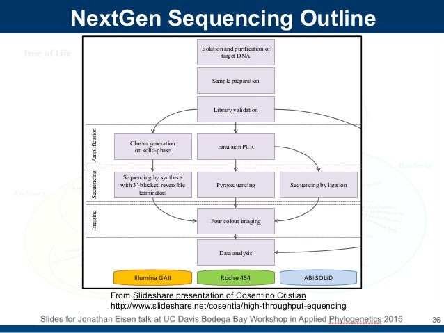 Evolution Of Dna Sequencing By Jonathan Eisen