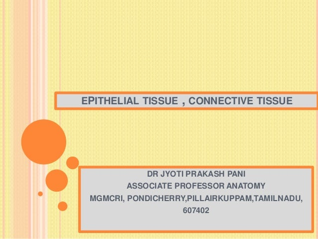 EPITHELIAL TISSUE , CONNECTIVE TISSUE DR JYOTI PRAKASH PANI ASSOCIATE PROFESSOR ANATOMY MGMCRI, PONDICHERRY,PILLAIRKUPPAM,...