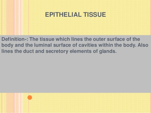 EPITHELIAL TISSUE Definition-: The tissue which lines the outer surface of the body and the luminal surface of cavities wi...