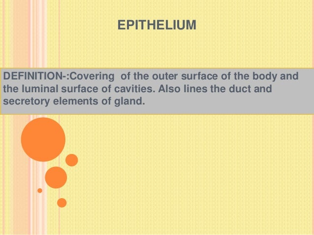 EPITHELIUM DEFINITION-:Covering of the outer surface of the body and the luminal surface of cavities. Also lines the duct ...