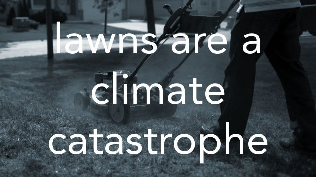 lawns are a climate catastrophe