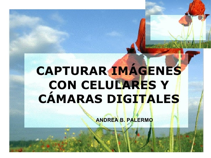 CAPTURAR IMÁGENES CON CELULARES Y CÁMARAS DIGITALES ANDREA B. PALERMO