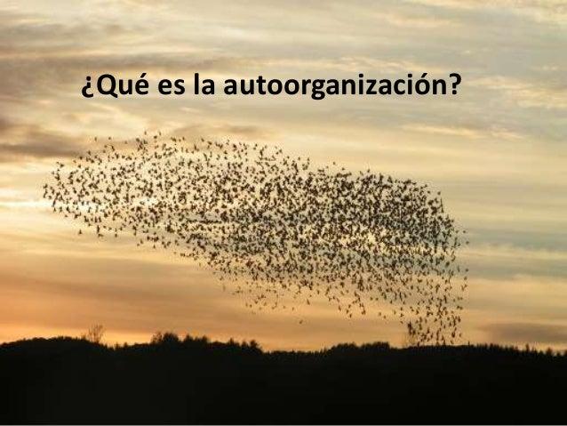 Un equipo se comporta como un Sistema adaptativo complejo • Es una red dinámica de muchos agentes – Actuando coordinadamen...