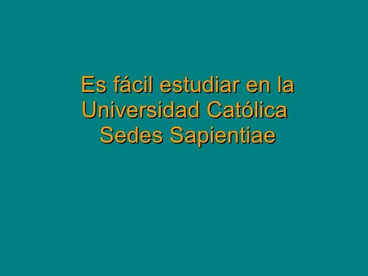 Es fácil estudiar en la Universidad Católica  Sedes Sapientiae