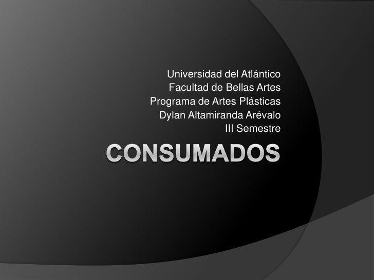 Universidad del Atlántico   Facultad de Bellas ArtesPrograma de Artes Plásticas  Dylan Altamiranda Arévalo                ...