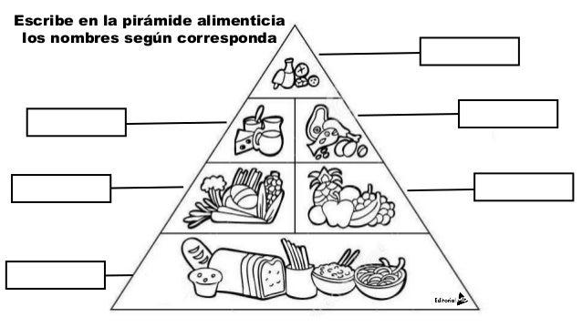 Ejemplo de primaria - Piramide alimenticia para colorear ...