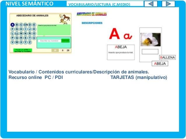 NIVEL SEMÁNTICO VOCABULARIO/LECTURA (C.MEDIO) Vocabulario/ Lectoescritura. Recurso en doble formato: MULTIMEDIA / FICHAS /...