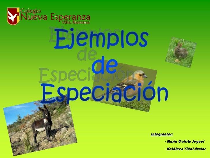 Ejemplos <br />de<br />Especiación<br />Integrantes:<br />- Maria Calisto Seguel<br />- Kathleen Vidal Avalos<br />