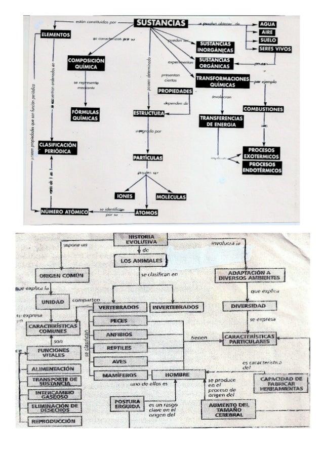 Ejemplos de mapas conceptuales Slide 2