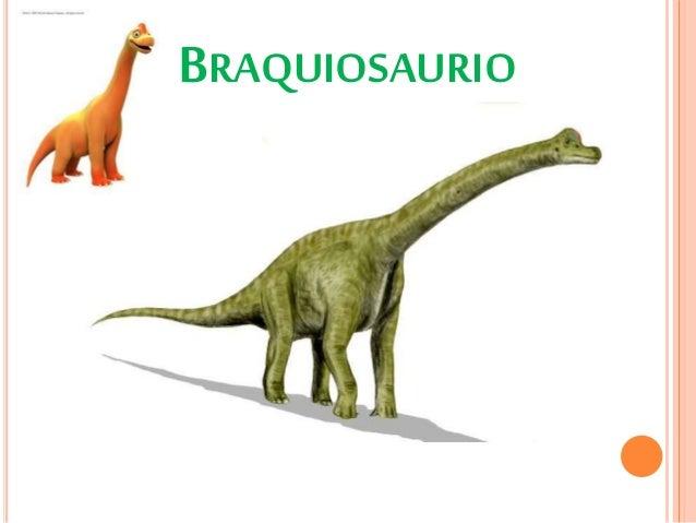 Tipos De Dinosaurios Rex, deinonychus antirrhopus presentado como velociraptor debido a que ¿pero estos eran todo los tipos de dinosaurio que poblaban la tierra? tipos de dinosaurios