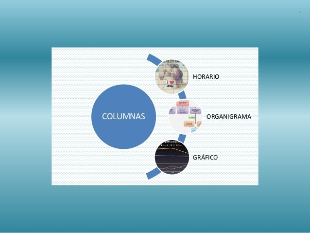 COLUMNAS HORARIO ORGANIGRAMA GRÁFICO