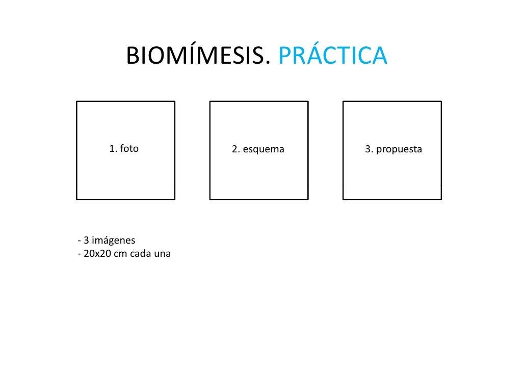 BIOMÍMESIS.PRÁCTICA          BIOMÍMESIS PRÁCTICA         1.foto          2.esquema                            222      ...