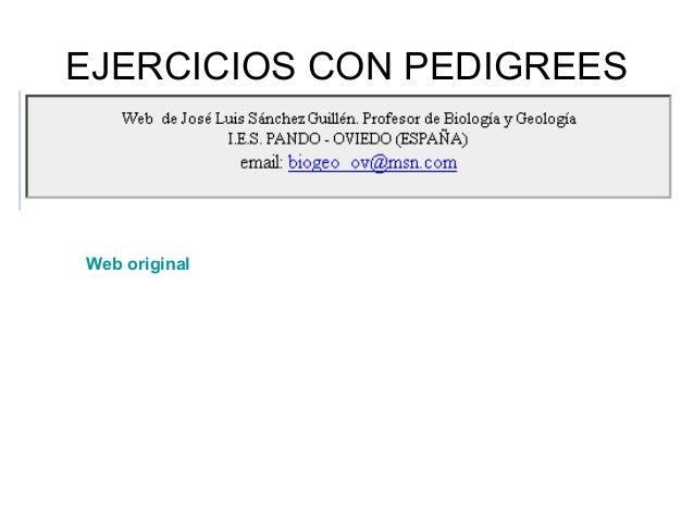 EJERCICIOS CON PEDIGREESWeb original