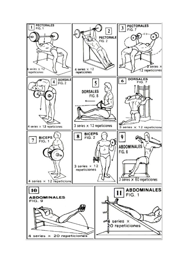 ejercicios con pesas y mancuernas