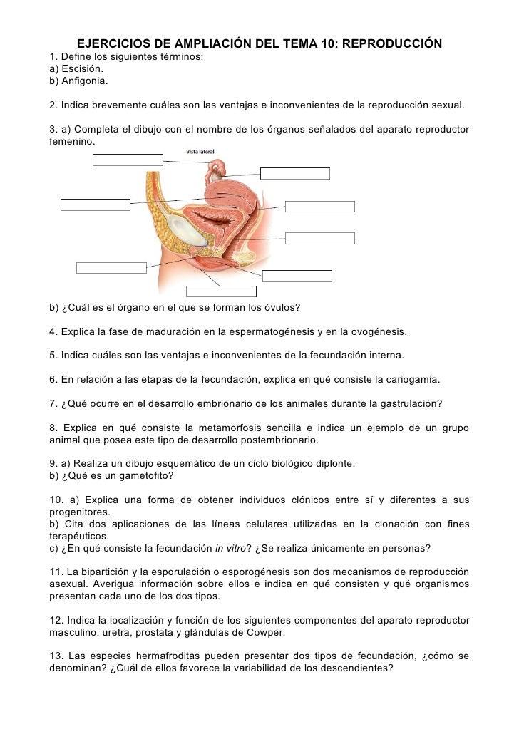 EJERCICIOS DE AMPLIACIÓN DEL TEMA 10: REPRODUCCIÓN1. Define los siguientes términos:a) Escisión.b) Anfigonia.2. Indica bre...
