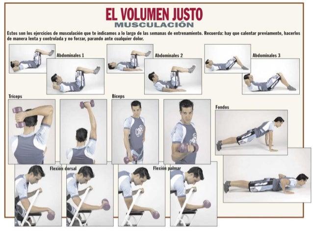 Ejercicios de musculaci n for Gimnasio musculacion