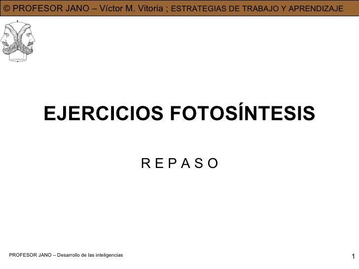 EJERCICIOS FOTOSÍNTESIS R E P A S O