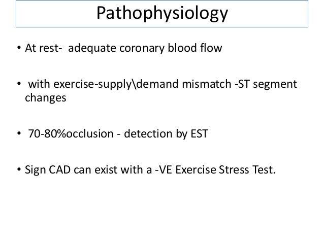 modified bruce protocol treadmill test pdf